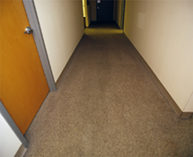 Carpet Care High Traffic Cleaning